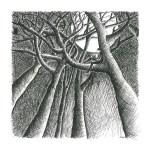 lebens-räume2