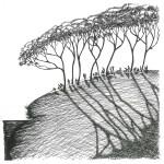 lebens-räume4