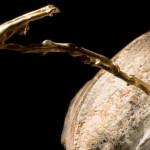 LA MER EST UNE FEMME (Syenit/Bronze)